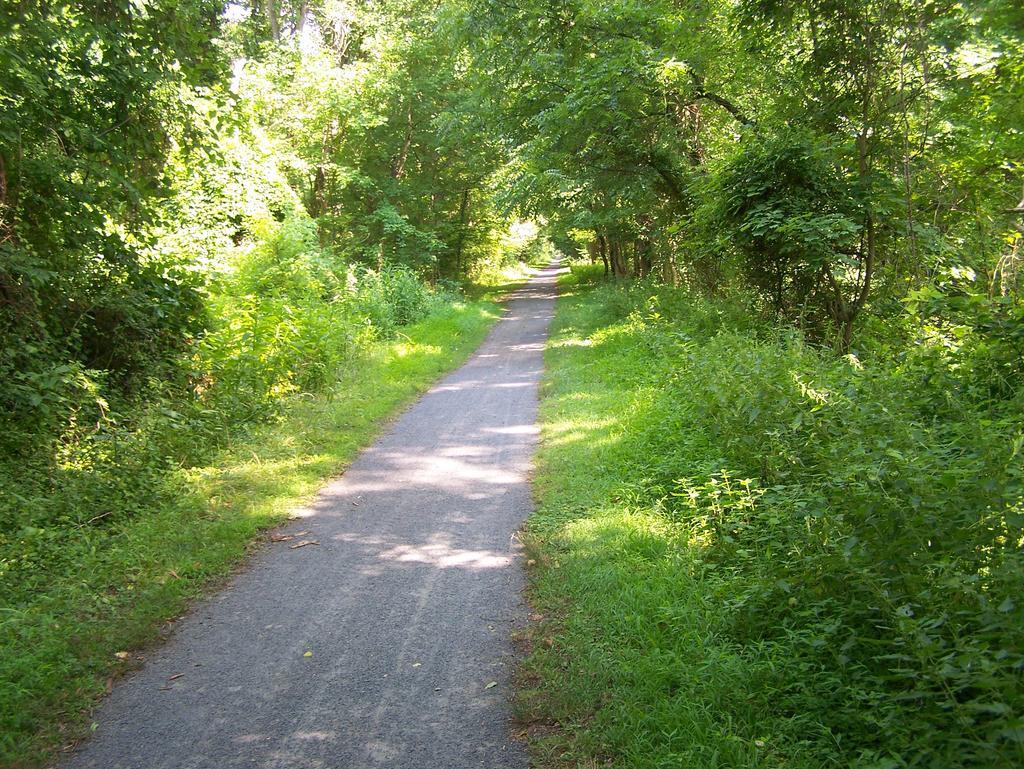 Fat Biking and health-100_3320.jpg