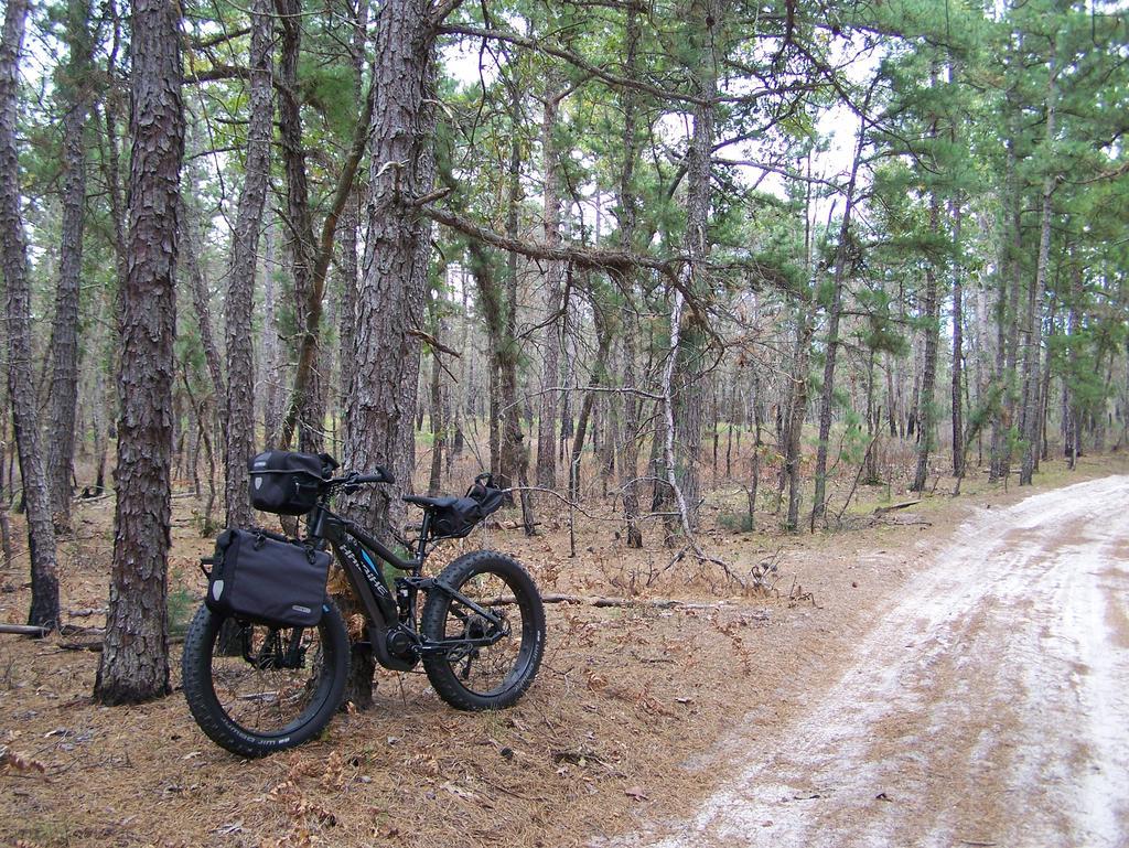 Fat Biking and health-100_3490.jpg