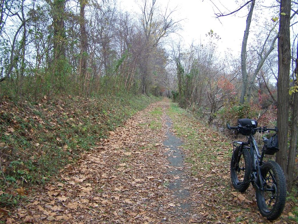 Fat Biking and health-100_3543.jpg