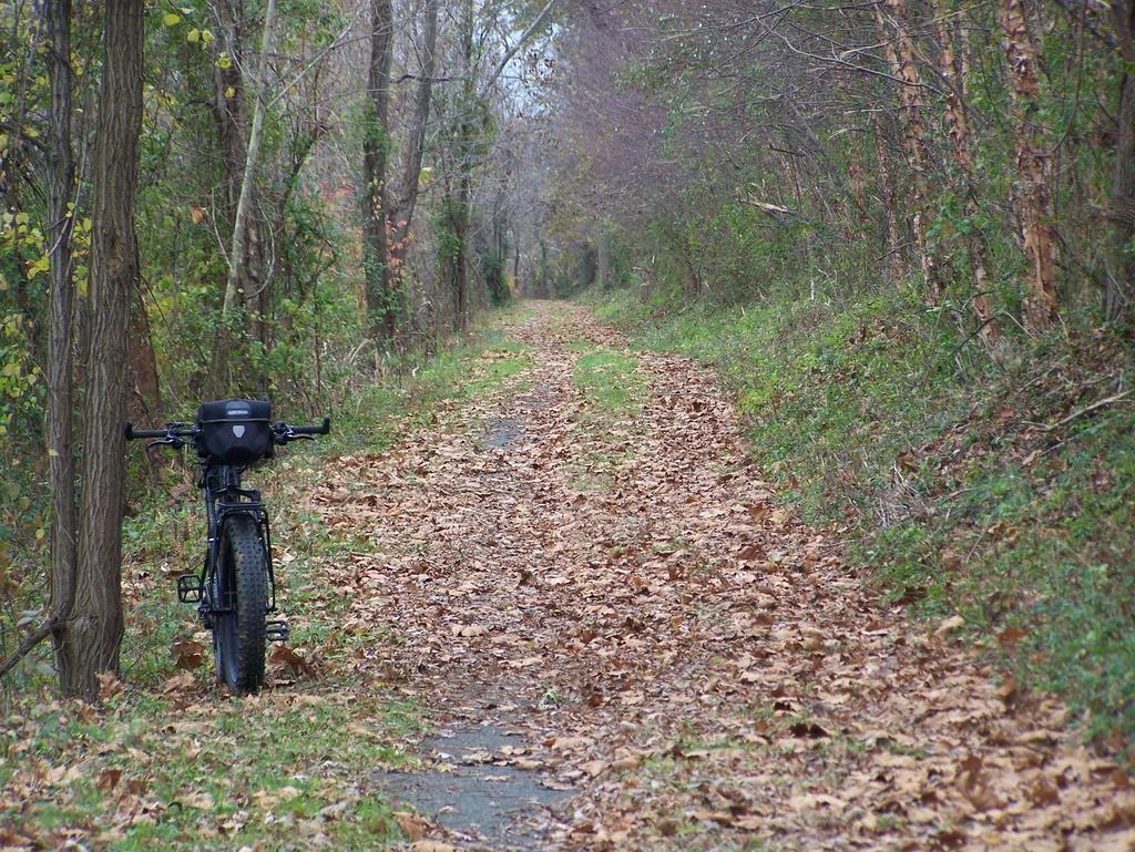 Fat Biking and health-100_3546.jpg