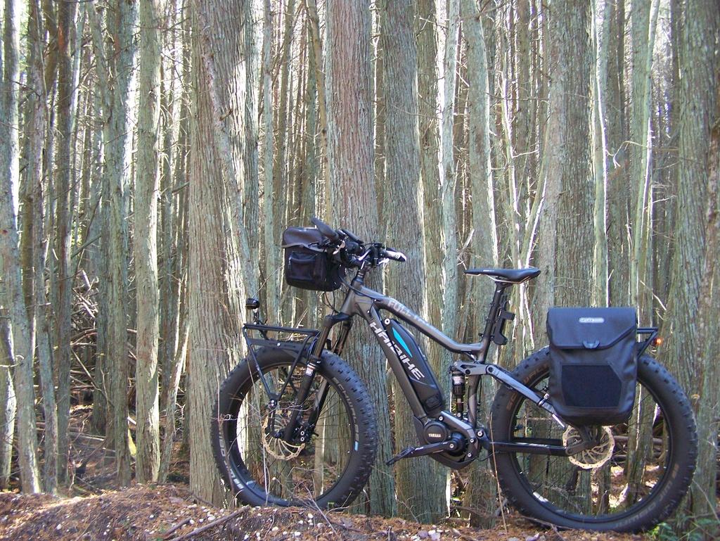 Fat Biking and health-100_4430.jpg