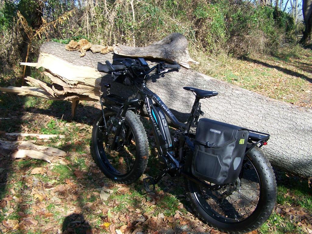 Fat Biking and health-100_4445.jpg