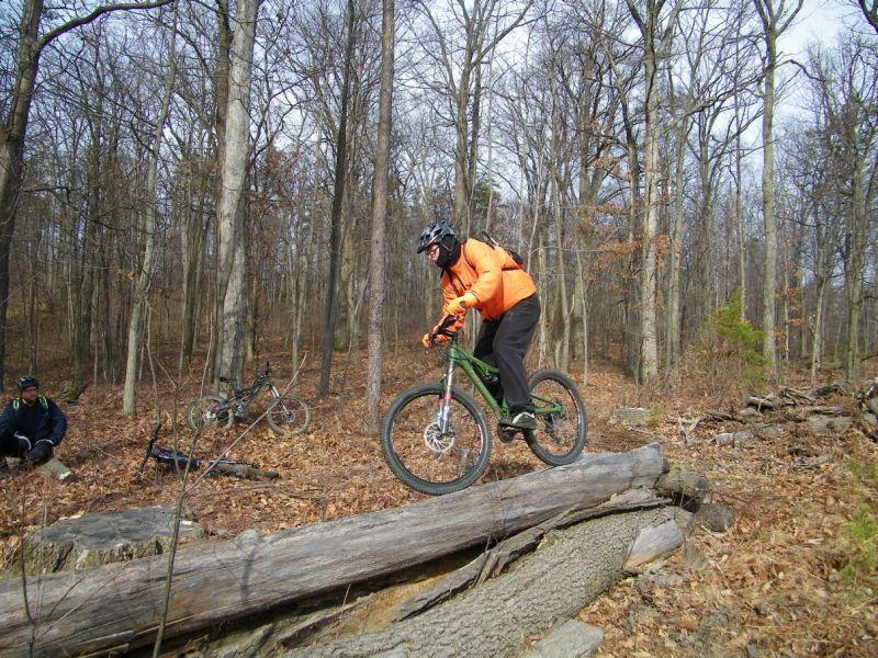 Playin On The Logs-100_4813.jpg