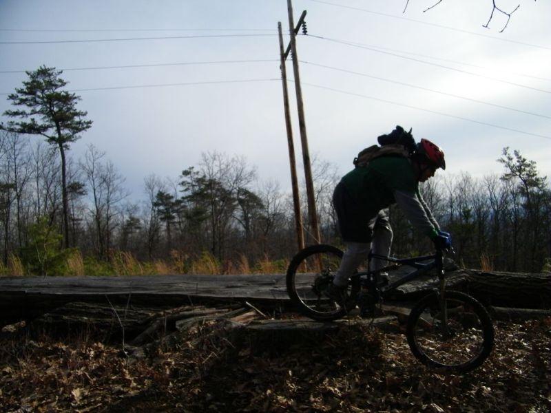 Playin On The Logs-100_4831.jpg