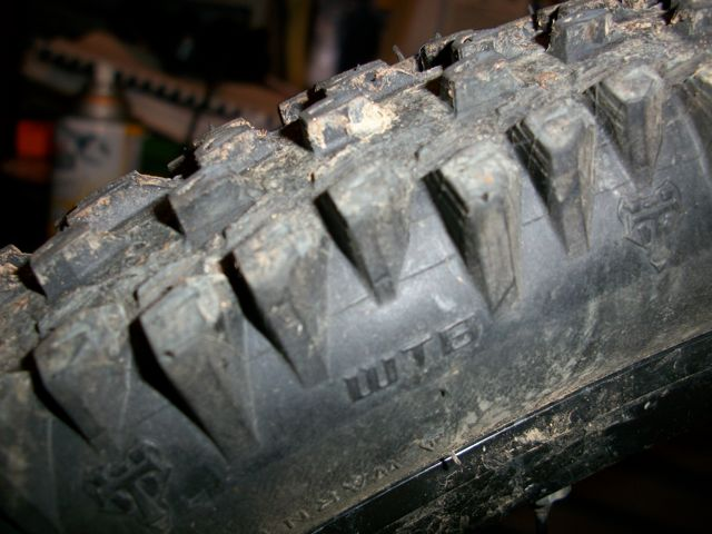 Photo Assignment: Best Tire for 2011!-100_5868.jpg