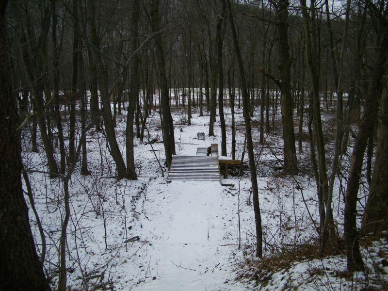 Brrrrrr....Cold Afternoon-100_6003.jpg