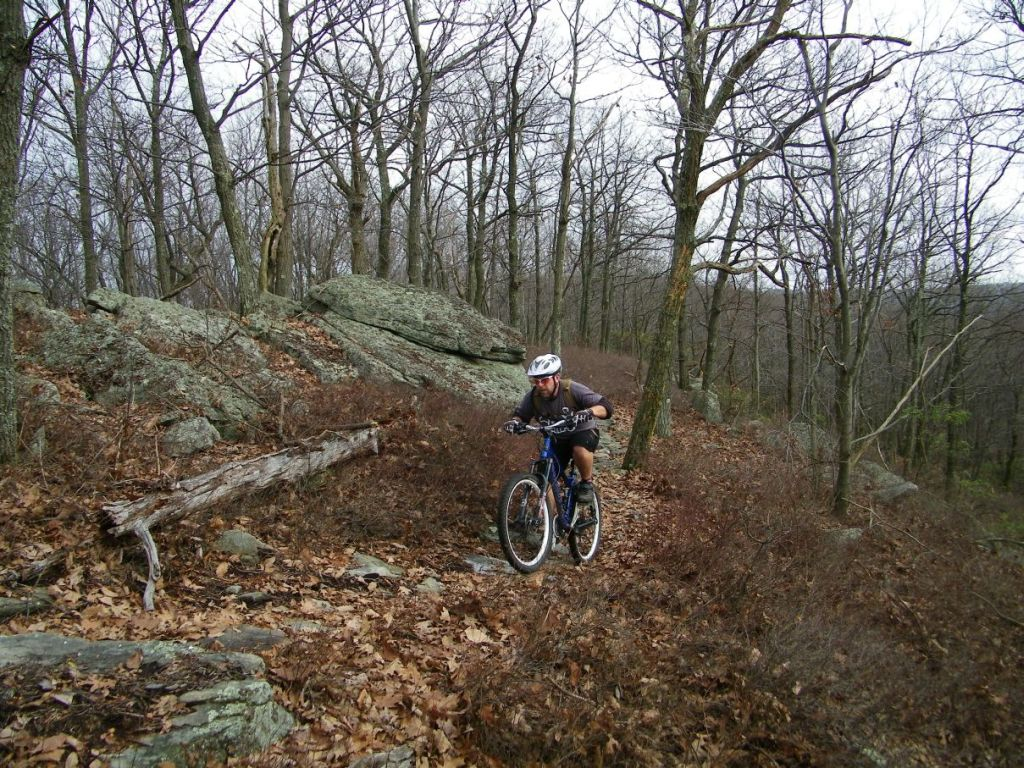 Nice Roaring Ride today - thanks gang-100b0231.jpg