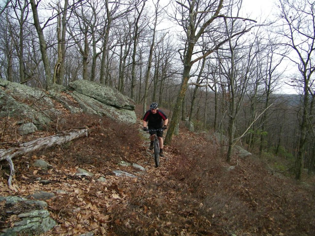 Nice Roaring Ride today - thanks gang-100b0240.jpg