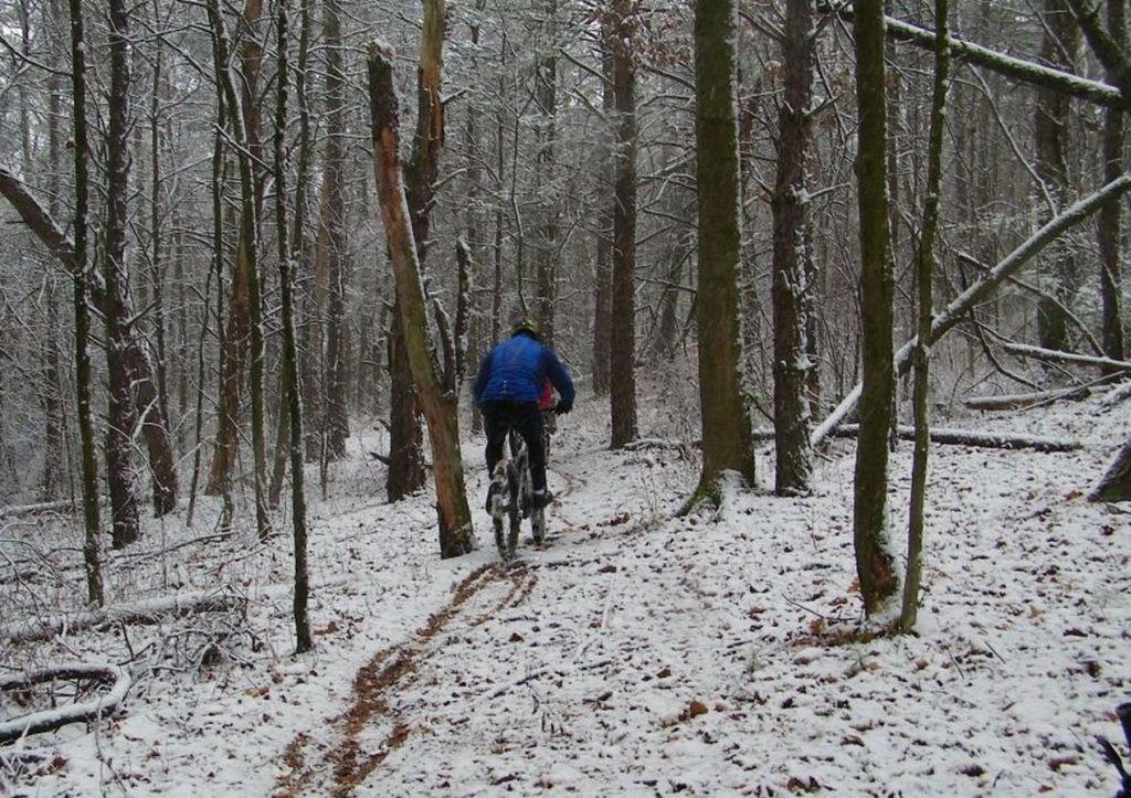 First Snow Ride........-100b1280cr.jpg