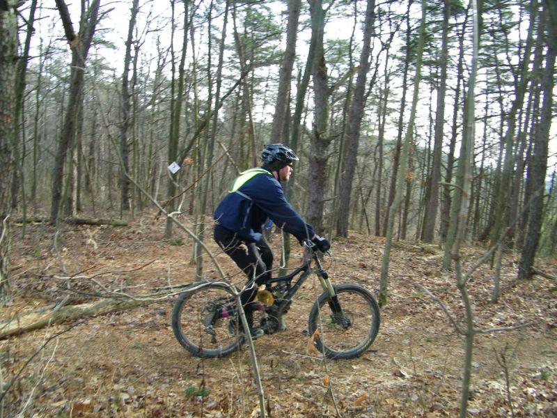 Playin On The Logs-100b4691.jpg