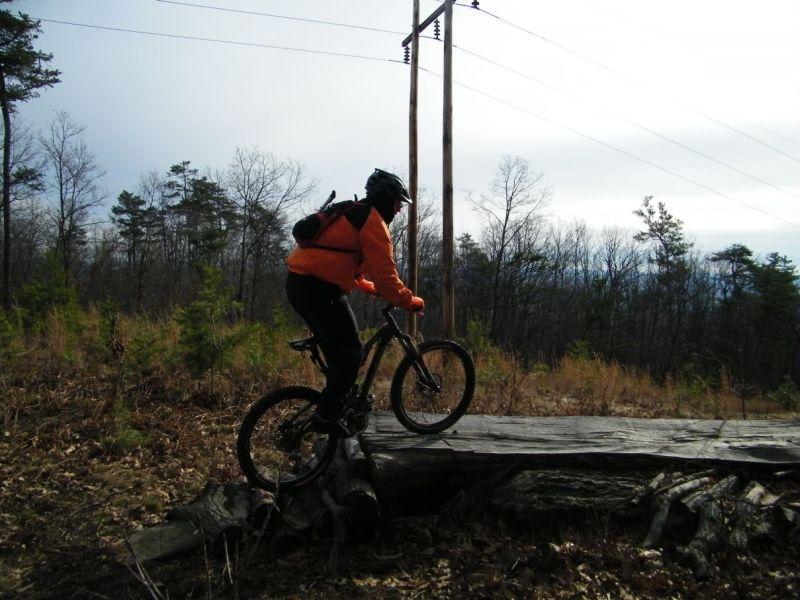Playin On The Logs-100b4814.jpg