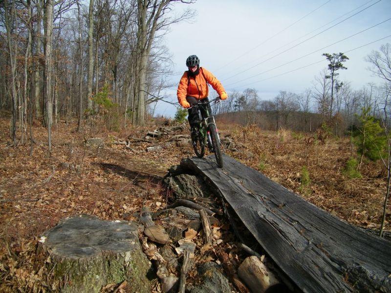 Playin On The Logs-100b4840.jpg