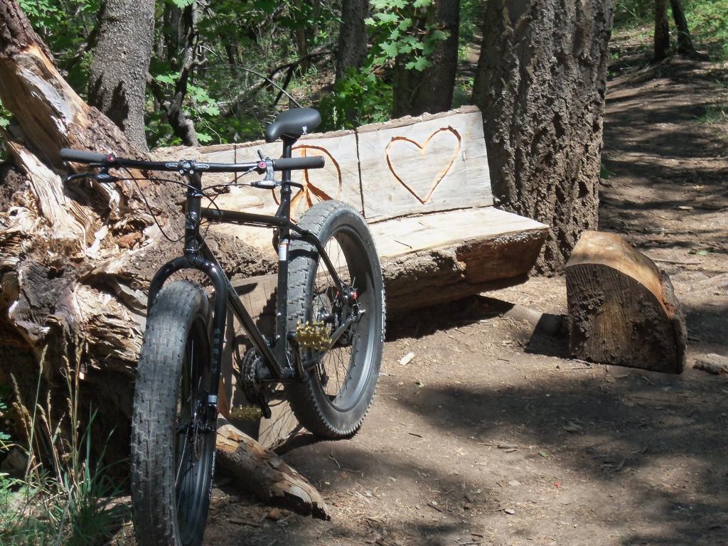 Daily Fat-Bike Pic Thread - 2012-101_0421.jpg