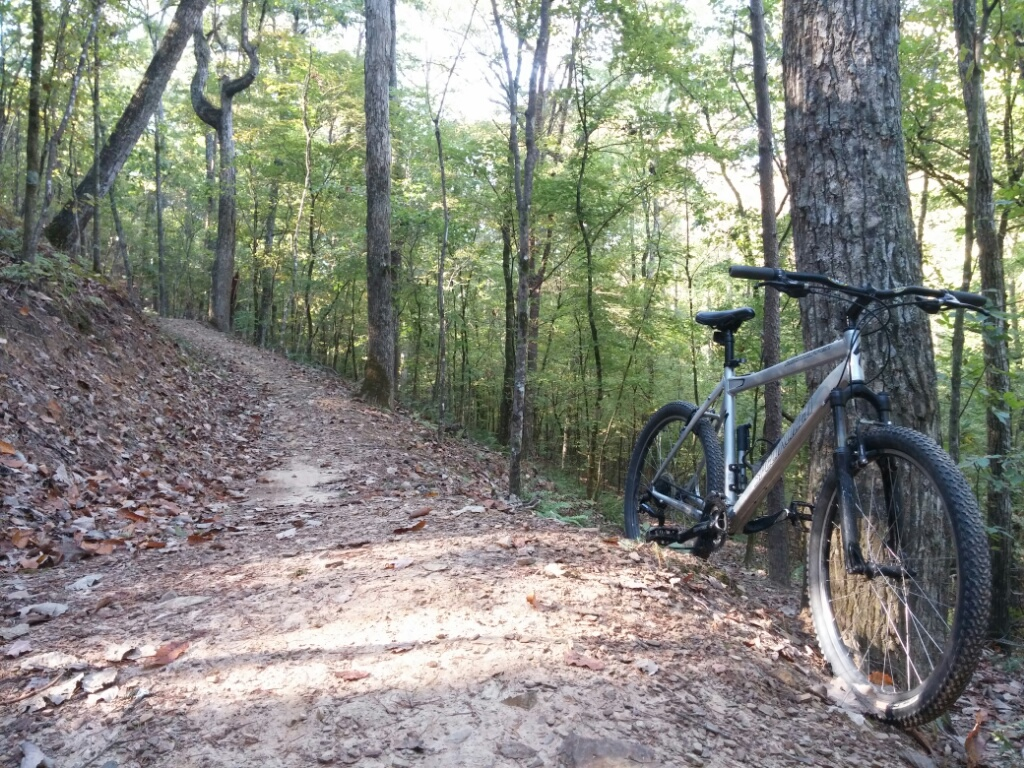 What did You do today on your mountain bike?-1021141000b_20141021171810771.jpg
