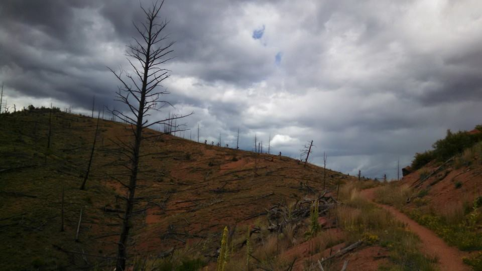 Colorado Trail Summer 2014:  An invitation (X-Post from Vacations)-10252057_10152659994867838_8556479830037187654_n.jpg