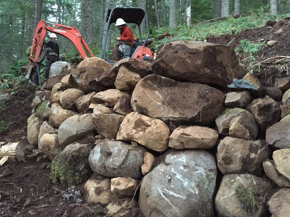 Logs to shore up bench cut on steep slopes a durable solution?-10269523_783023385097721_538344782553004178_n.jpg