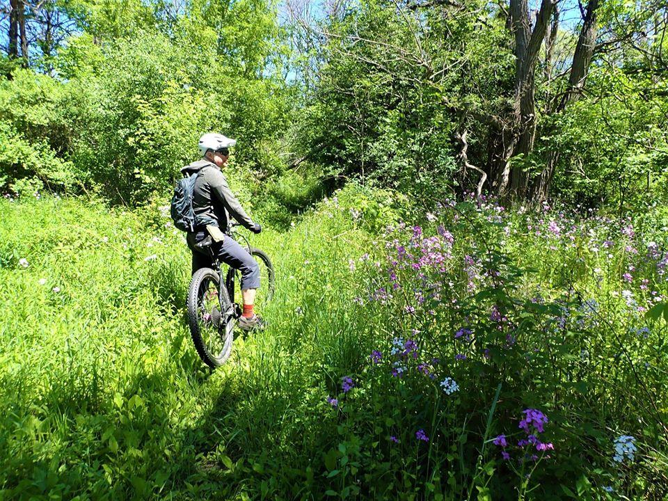 Local Trail Rides-102725148_2714890092088758_8327076299166102657_o.jpg