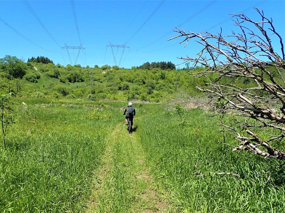 Local Trail Rides-102886853_2714925288751905_6062470989304335179_o.jpg