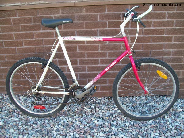 Was your first MTB a love or a mistake?-102_6786.jpg