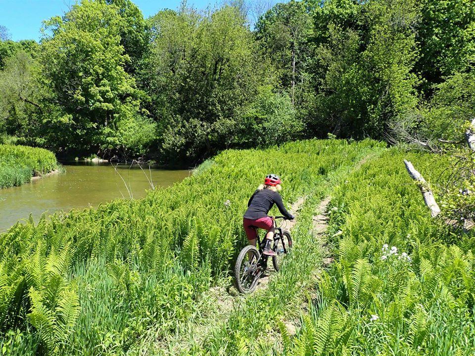 Local Trail Rides-103027131_2714897182088049_613345406530051443_o.jpg