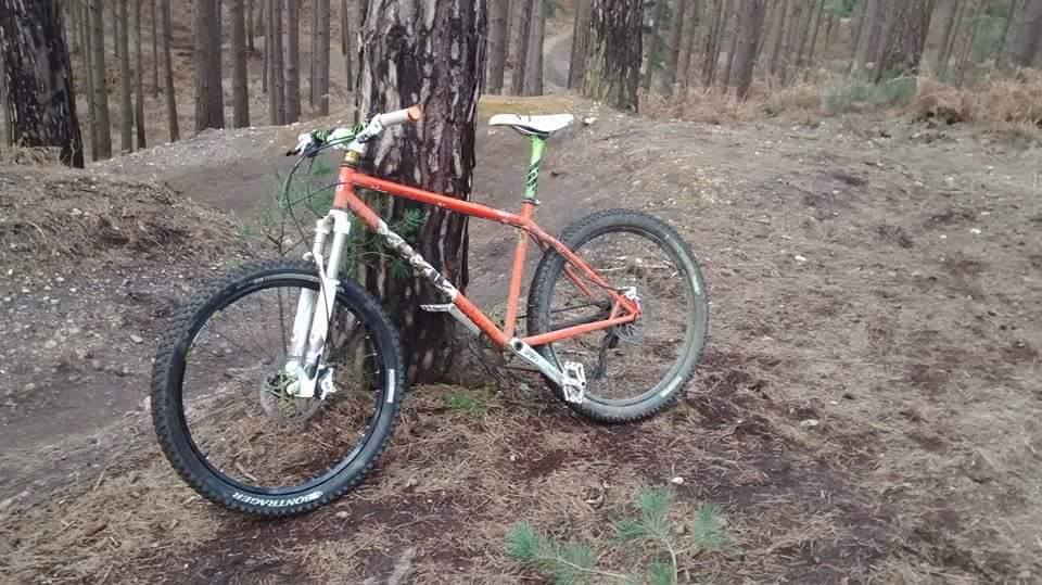 The All Mountain Hardtail Thread. Post up yours.-10358891_10155147441250252_4906772583638083468_n.jpg