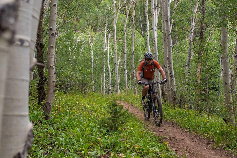 Colorado Trail Summer 2014:  An invitation-10408867_10152425944388347_1119513366768303525_n.jpg