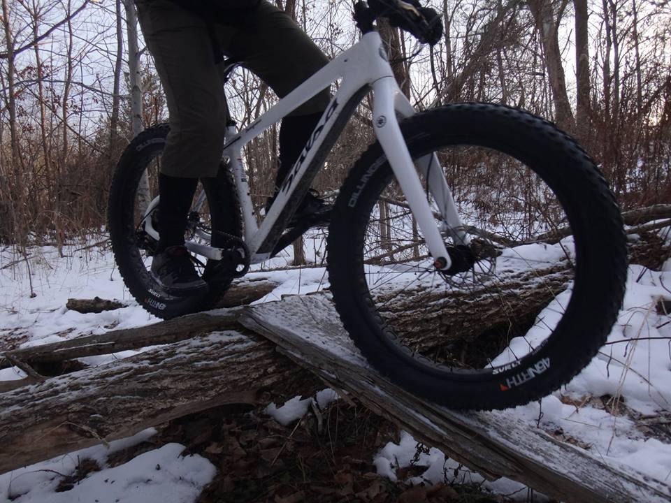 Local Trail Rides-10409201_610698889059123_6387288317807190828_n.jpg