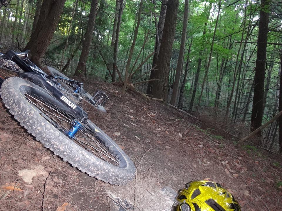 Local Trail Rides-10478228_531901666938846_8470792457142007552_n.jpg