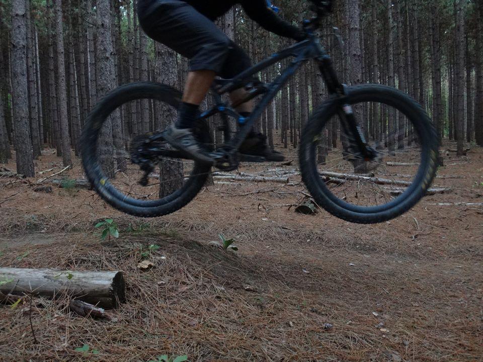 Local Trail Rides-10521734_573620346100311_4324724191092366820_n.jpg