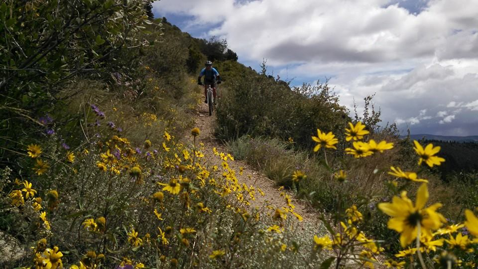 Colorado Trail Summer 2014:  An invitation (X-Post from Vacations)-10592625_10152669437142838_7865626154782016465_n.jpg