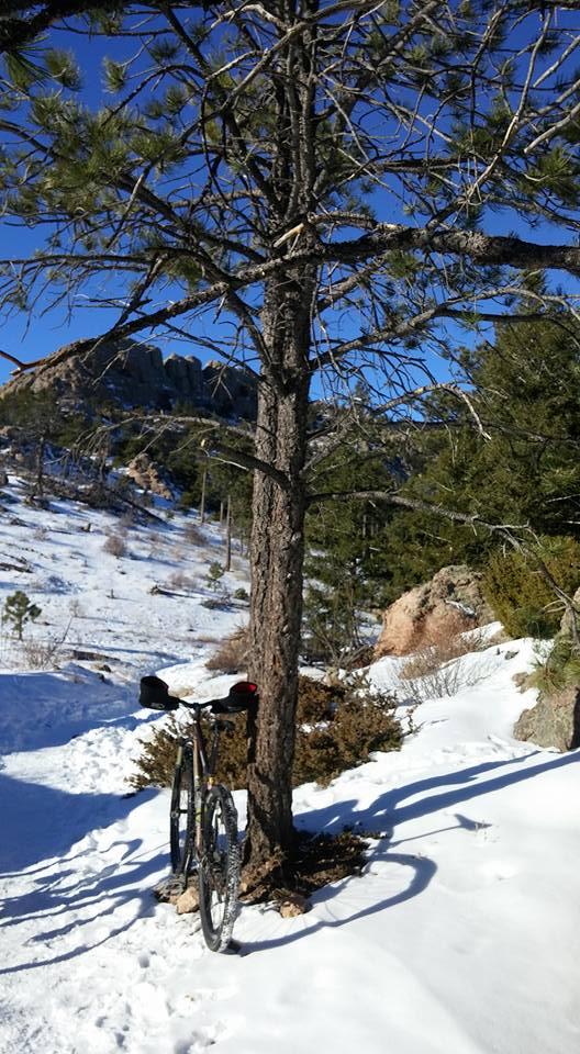 Trail Pics-10593087_10208484293973834_5181578119929283414_n.jpg