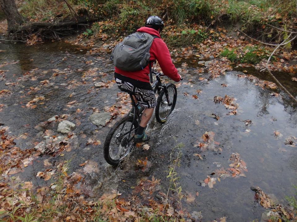 Local Trail Rides-10606378_585107511618261_8432665715173177712_n.jpg
