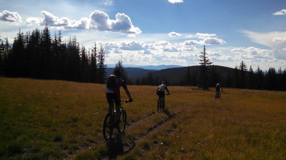 Colorado Trail Summer 2014:  An invitation-10609719_10152672618307838_1131205184512814830_n.jpg