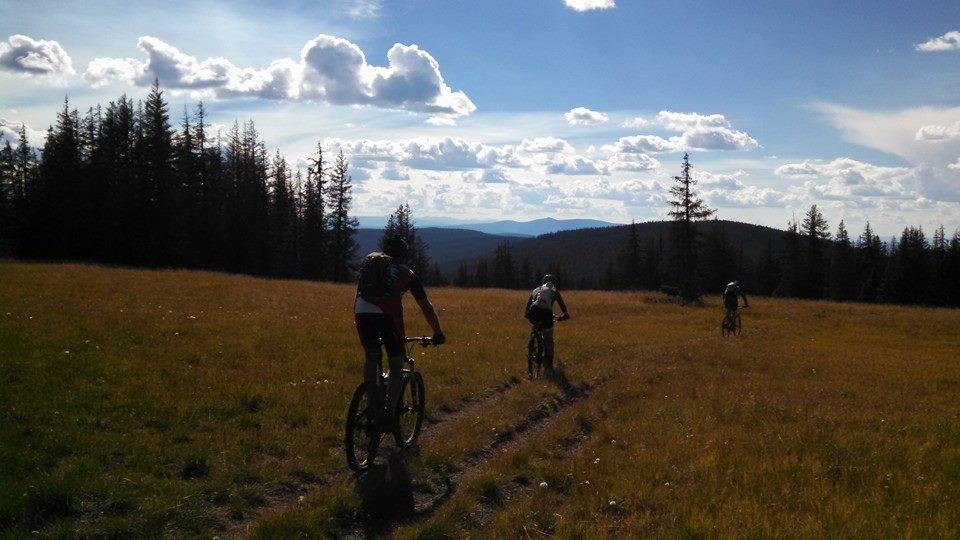 Colorado Trail Summer 2014:  An invitation (X-Post from Vacations)-10609719_10152672618307838_1131205184512814830_n.jpg