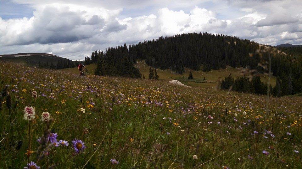 Colorado Trail Summer 2014:  An invitation-10615605_10152662456977838_3693077668972216096_n.jpg