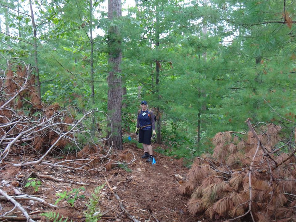 Building trail 2015... tips, tricks and trips-10622913_546713085457704_6154096833717709986_n_zps5771ea99.jpg