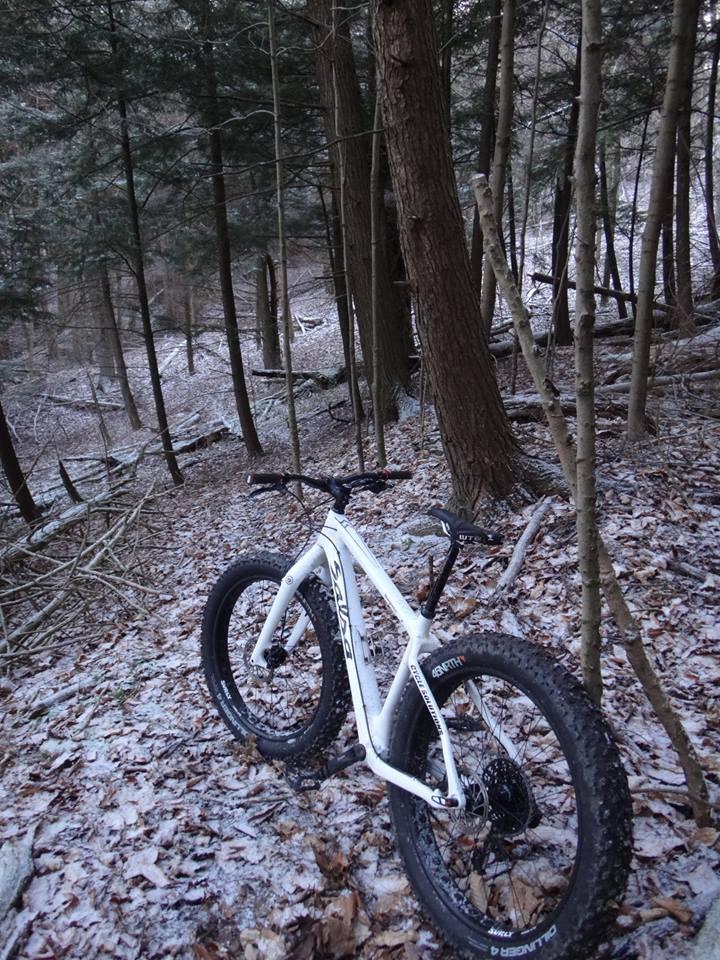 Local Trail Rides-10636158_616940795101599_1584342559748139995_n.jpg