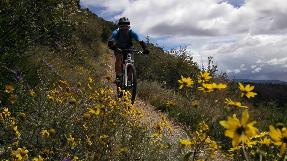 Colorado Trail Summer 2014:  An invitation-10647189_10152669436832838_3744737464828601790_n.jpg