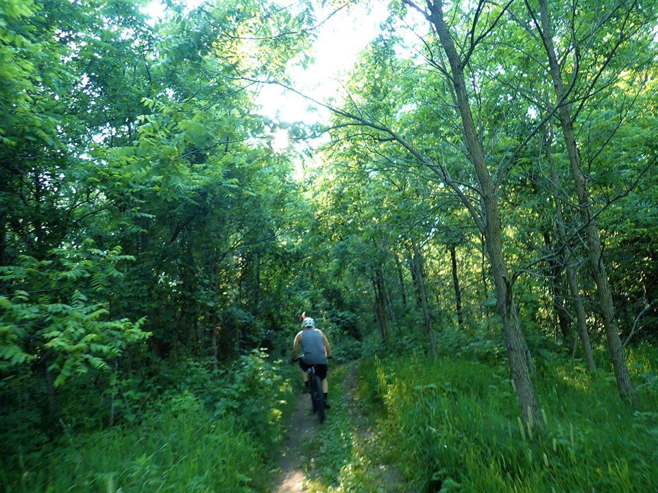 Local Trail Rides-106714505_2736351619942605_2435475796764503064_o.jpg
