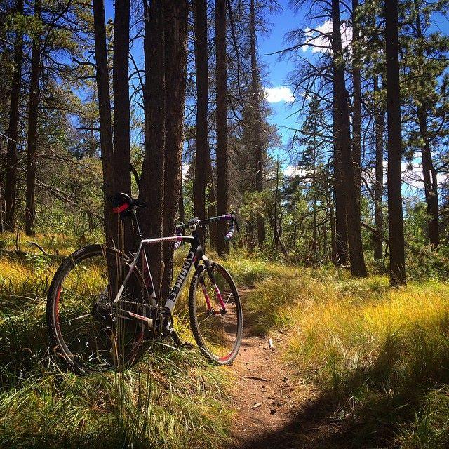 Cross Bikes on Singletrack - Post Your Photos-10672221_10154542539760442_8153451715905298785_n.jpg
