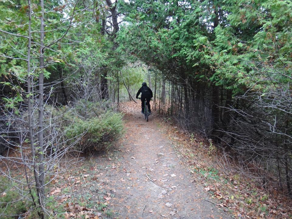 Local Trail Rides-10675507_583795705082775_7728248319305115731_n.jpg