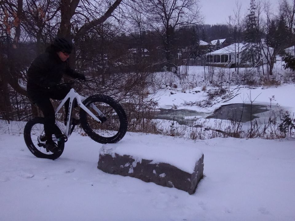 Local Trail Rides-10689449_620623884733290_3453726731678771087_n.jpg