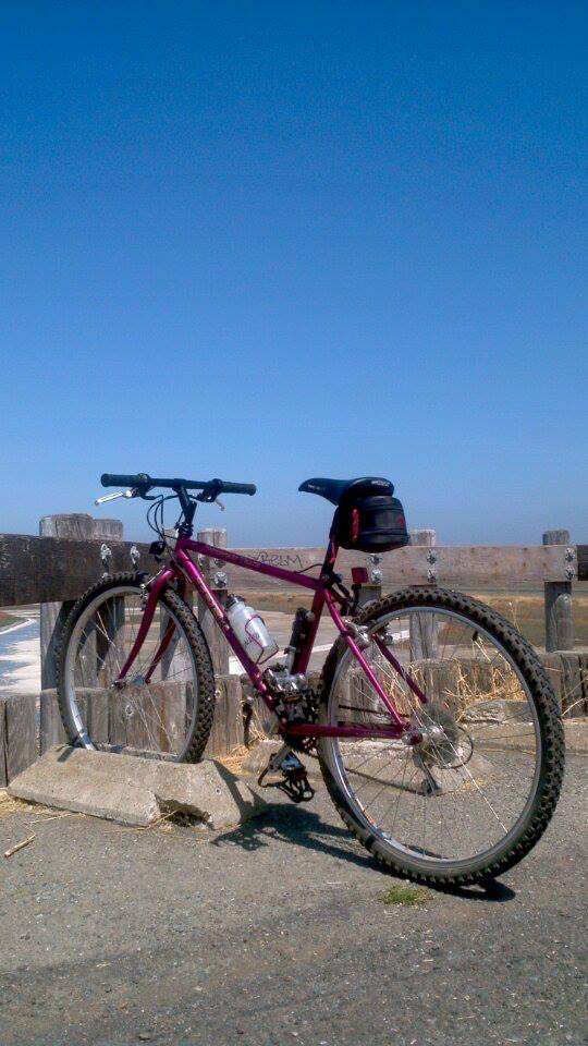 Mountain Biking on a rigid frame, Need tips!-1069110_10201683906963728_858330217_n.jpg