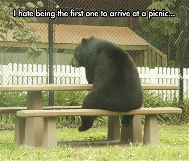"""""""Bar Hopping Bear""""-10702060_1074705192558933_7901021778228313932_n.jpg"""
