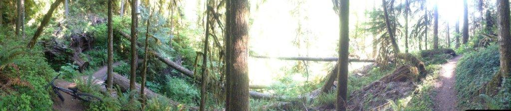 Panoramic photos-1072599_10200964796155898_1821401195_o.jpg