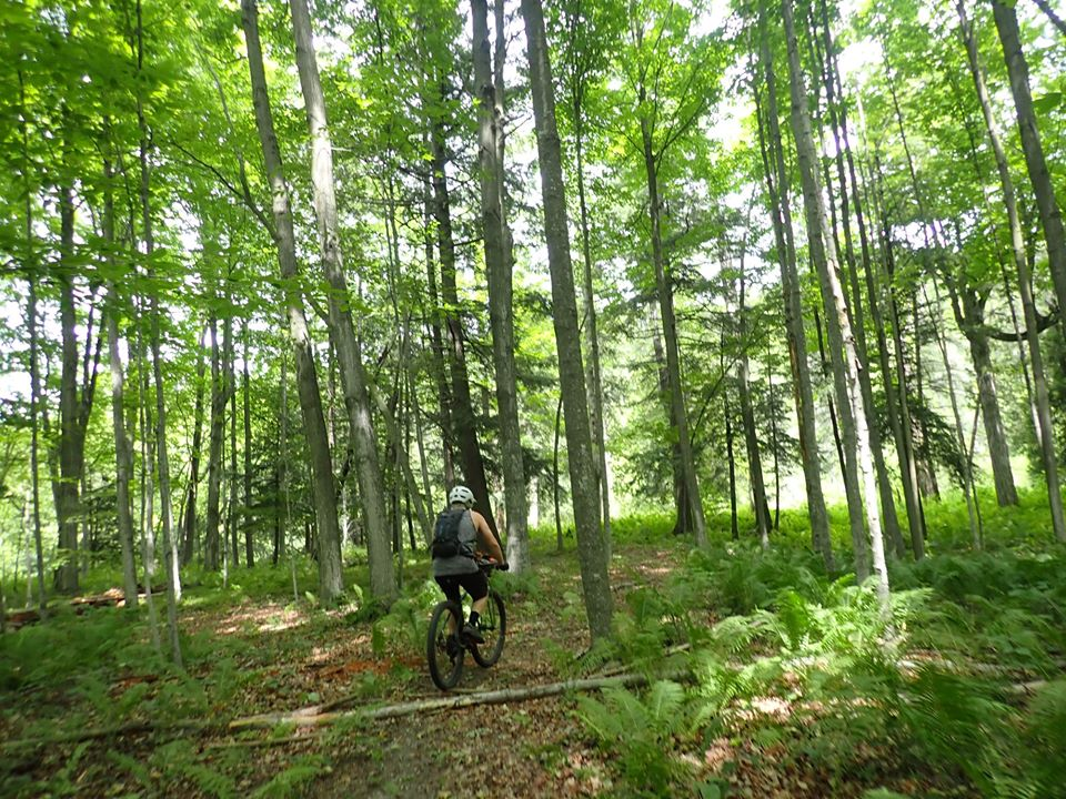 did you ride today?-107379146_2739665639611203_3296446700823016171_o.jpg