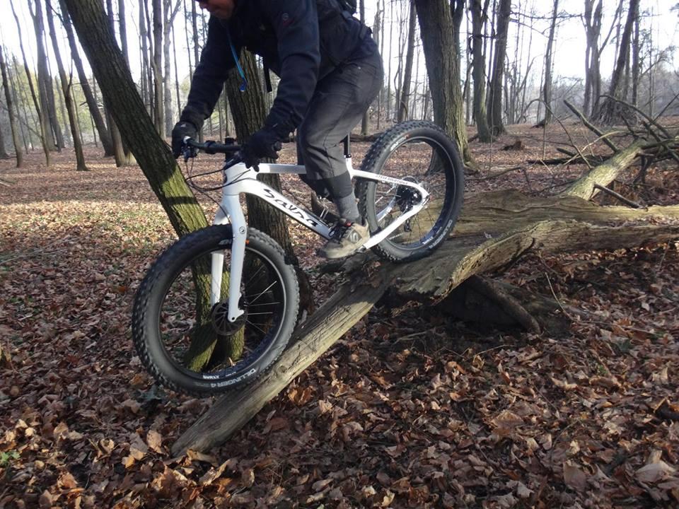 Local Trail Rides-10805769_605039849625027_305034053624125970_n.jpg