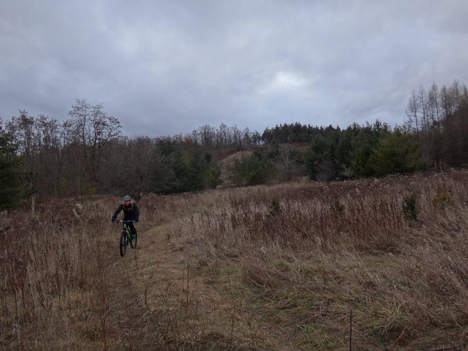 Local Trail Rides-10897107_616337501828595_412034635059541209_n-1-.jpg