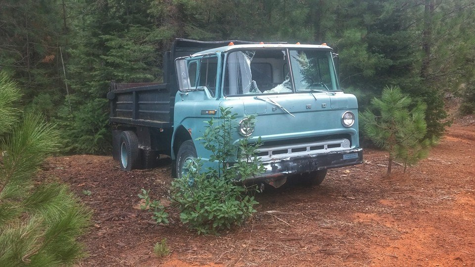 The Abandoned Vehicle Thread-10929168_10153101601465649_8845569900999097679_n.jpg