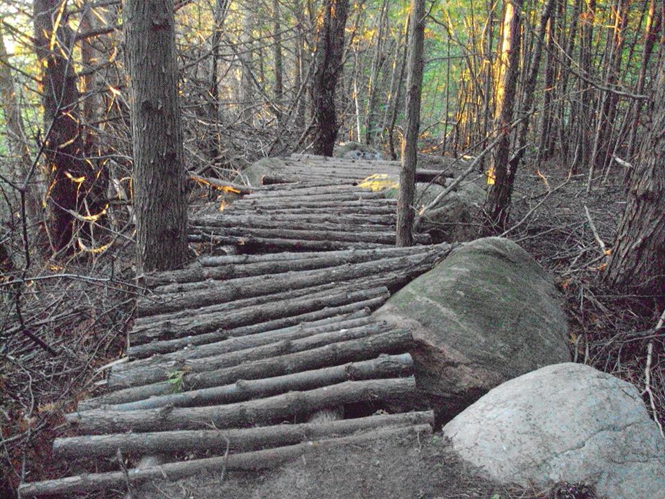 Bridges of Eastern Canada-10993410_318369618360302_1649046581966103308_n.jpg